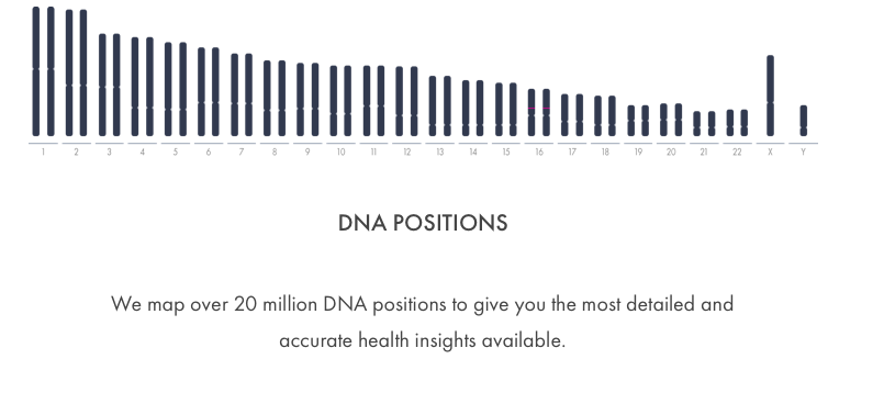 1b dna positions